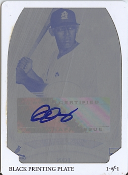 Jay_1of1_plate_auto